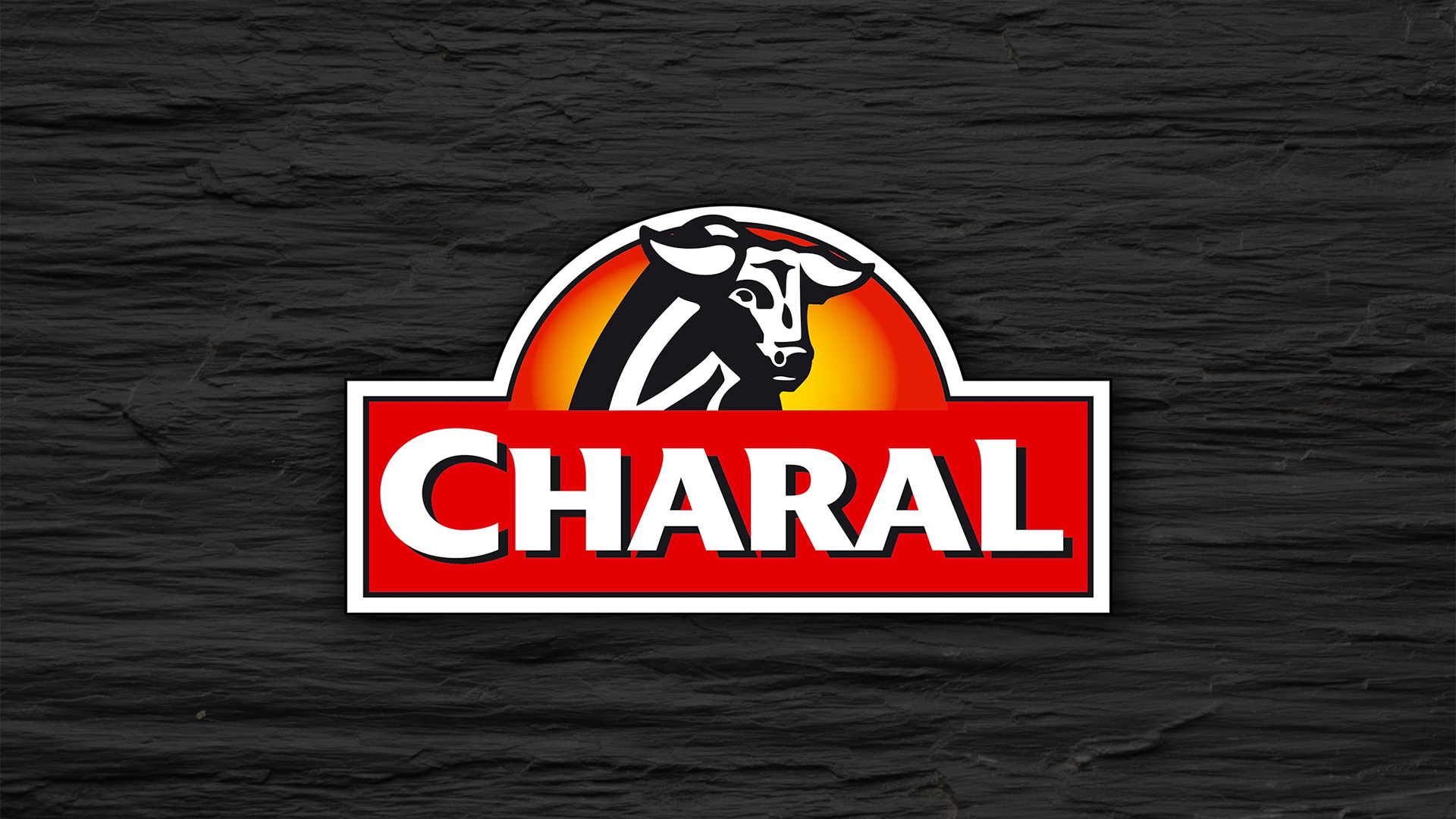 01_florian_branchet_designer_graphique_charal_intro
