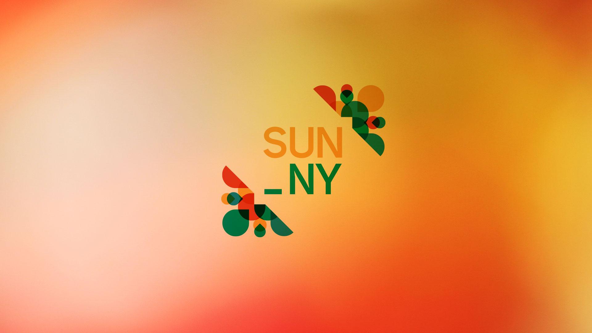 06_florian_branchet_designer_graphique_logo_speack_sunny