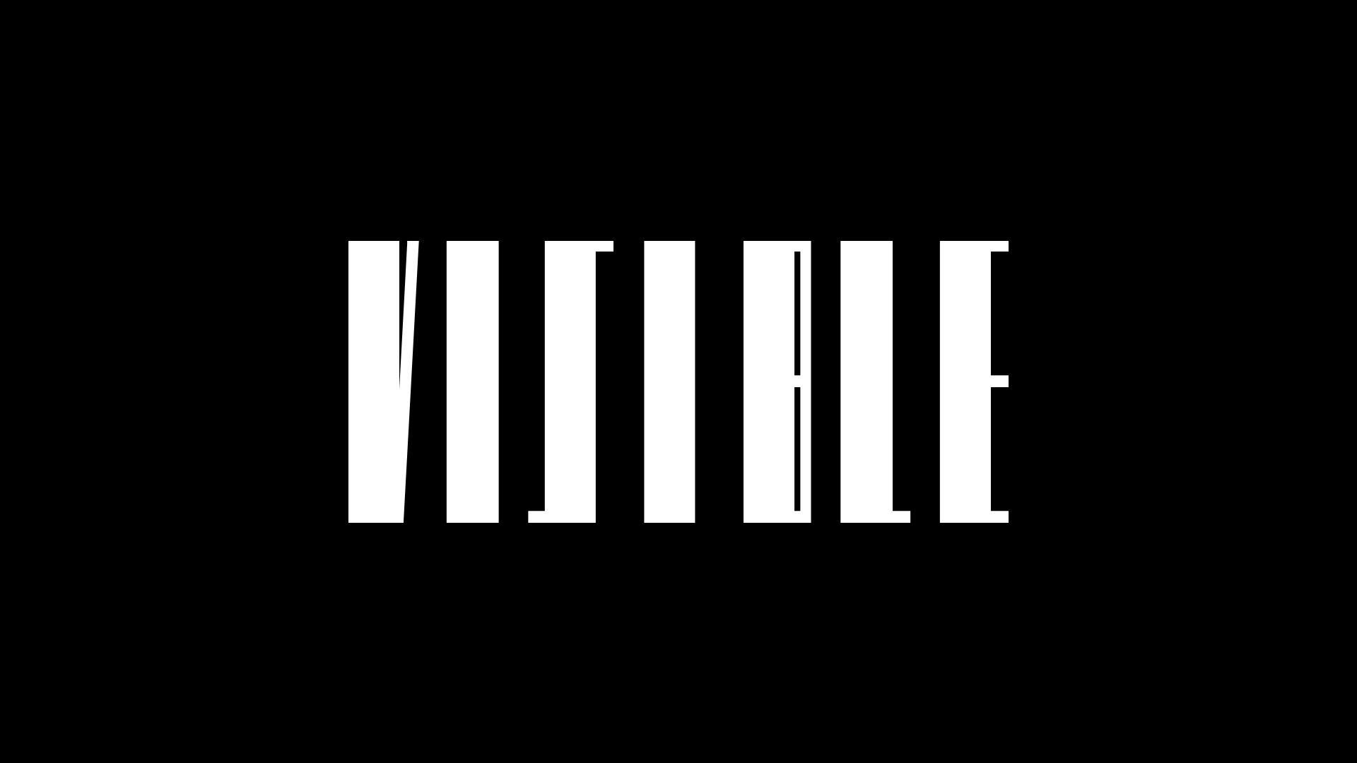 03_florian_branchet_designer_graphique_visible_logo2